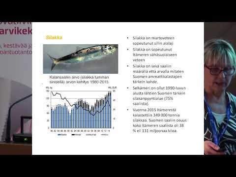 Arktisuudesta potkua markkinointiin – tietopaketti kala-alan toimijoille - Anu Reinikainen, Luke